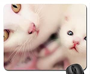 Cat and Kitten Cute Cool Decorative Design Animal Cat Mousepad Rainbow Designs by ruishername