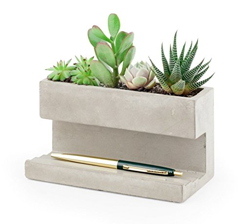 kikkerland-concrete-desktop-planter-large-pl02-l