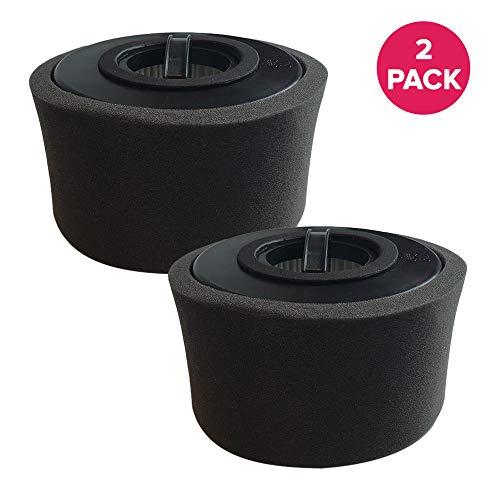 - Crucial Vacuum Air Filter Replacement - Compatible with Eureka Vac Filters Part # DCF-20, DCF20 - Models 3041AQU, 3041QU, 3041AZ, 3041AZE - Bulk Packs for Vacs, Home Vacuums, Office (2 Pack)