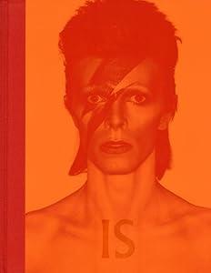 vignette de 'David Bowie est le sujet (Victoria Broackes)'