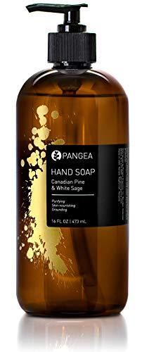 Pangea Organics Hand Soap - Canadian Pine & White Sage (16oz.) (Pangea Organics Organic Soap)