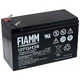 FIAMM Bleiakku 12FGH36 (hochstromfest), 12V, Lead-Acid