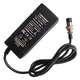 29.4V 2A Ebike Lithium Battery Pack Charger 25.2V 25.9V 2A 7series 24V 3 Prong Inline 0.41inch