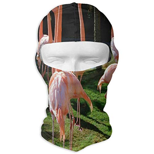 LoveBea Balaclava Flamingo Cute Animals Full Face Masks Ski Headcover Motorcycle Hood for Cycling Sports Hiking