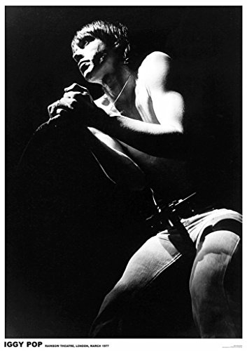 Art-I-Ficial Iggy Pop London 1977 Music Poster 23.5x33 inch