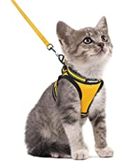 rabbitgoo Cat Harness and Leash Set for Walking Escape Proof, Adjustable Soft Kittens Vest with Reflective Strip for Extra Small Cats, Step-in Comfortable Outdoor Vest Harness