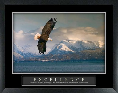 Excellence Eagle Majestic Mountain Lake View Scenic Framed Motivational ()