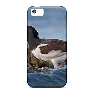 LJF phone case New Design Shatterproof NhDUJRY4184JPobJ Case For Iphone 5c (american Oystercatcher)