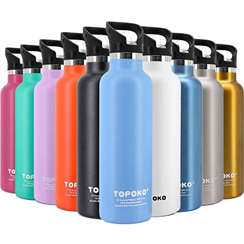 TOPOKO 25 Ounce Double Wall Stainless Steel Water Bottle Vacuum Insulation Bottle Leak Proof Bottle,BPA Free with Straw with Handle Flip Top Spout Lid-Sky Blue ¡