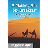 A monkey ate my breakfast: Motorhome adventures in Morocco