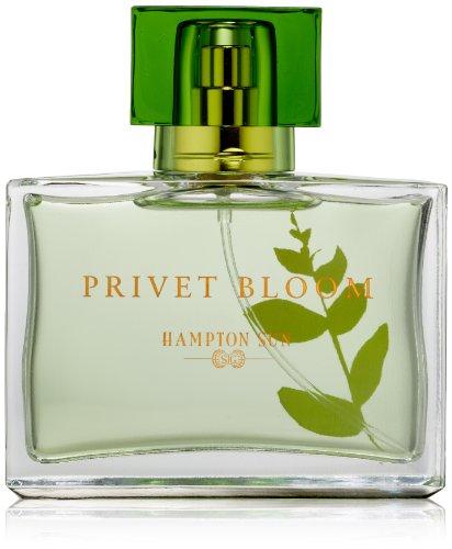 Hampton Sun Privet Bloom Eau de Toilette Spray, 1.7 fl. oz.