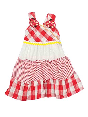 Youngland Infant Toddler Girls Red White Checkered Gingham Ladybug Summer Sun Dress 12M