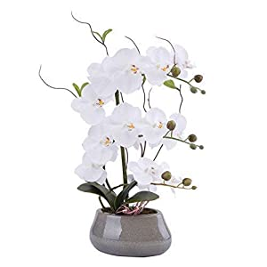 Flower Arrangement with Decorative Vase Full Artificial Orchid Plant with Real Looking (Gray-vase, White)