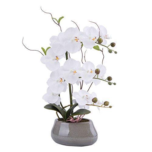 Flower Arrangement with Decorative Vase Full Artificial Orchid Plant with Real Looking (Gray-vase, White) (Large Orchid Arrangements)