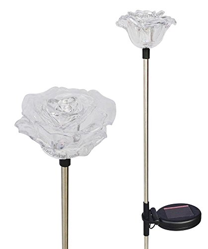 Solar Wholesale 1047 Roses Flower Lights, 2 Pack for Outdoor and Holiday Decorations ()