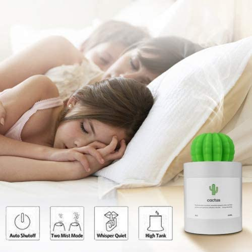 280ML Mini Cactus Air Humidifier USB Chargeable Cool Mist Humidifier, Ultra Quiet Air Diffuser for Bedroom Home Office Yoga Car Travel