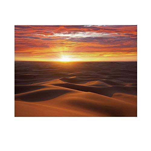 - Desert Photography Background,Dramatic Sunset Scenery at Sahara Dunes Arid Landscape Morrocco Summer Nature Backdrop for Studio,5x3ft
