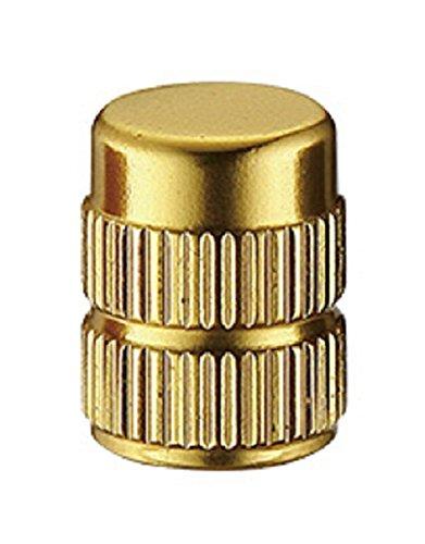 トーケン TK3293 AV バルブキャップ 2本セット ゴールド(523VCP3293C)