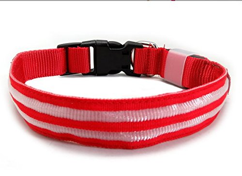 Ocean Place Ltd LED Dog Collar USB Rechargeable Nylon Webbing Flashing Light Up Collar with D-Ring Makes Your Pet Visible Safe and Seen for Medium Large Dogs (red) (Ocean Place)