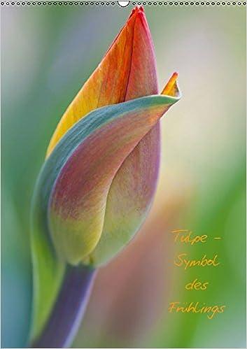 symbol tulpe