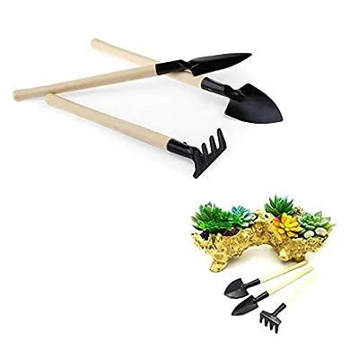 Juner Mini Garden 3 Piece Stainless Steel Garden Tool Set Wood Handle Shovel Trowel (Black) : Garden & Outdoor