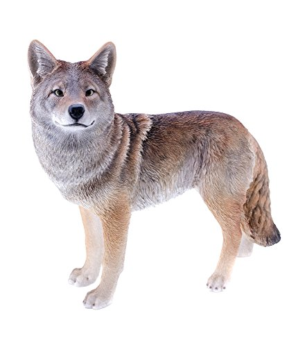 Hi-Line Gift Ltd Coyote Garden Statue Review