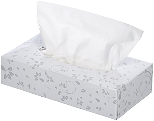 AmazonBasics Professional Facial Tissue Flat Box for Businesses, 2-Ply, White, 100 Tissues per Box, 30 Boxes by AmazonBasics