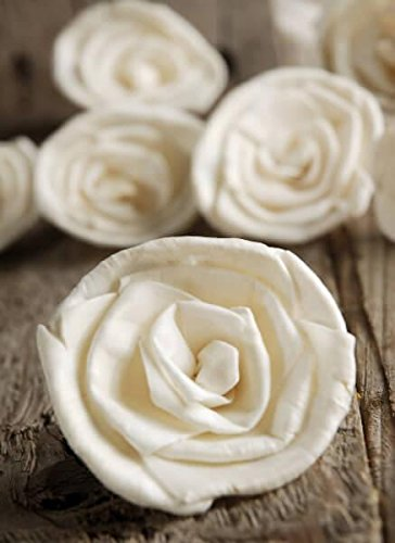 Richland Sola Flowers 2.5'' Roses Set of 15