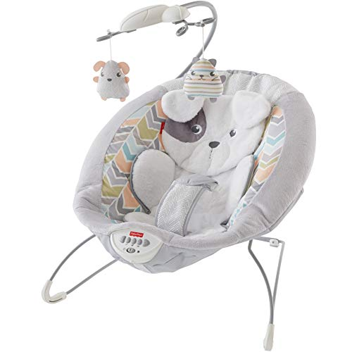 Fisher-Price Sweet Snugapuppy Dreams