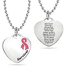 Bling Jewelry Breast Cancer Poem Pink Ribbon Disc Pendant Stainless Steel Necklace 18 Inches