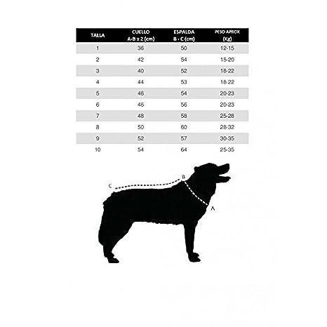 Doggallop DOGHAR1 Arnés Canicross: Amazon.es: Productos para mascotas