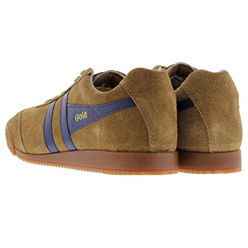 UK Womens Harrier Suede Trainers Sport 7 Tabaco Gola zq0OO
