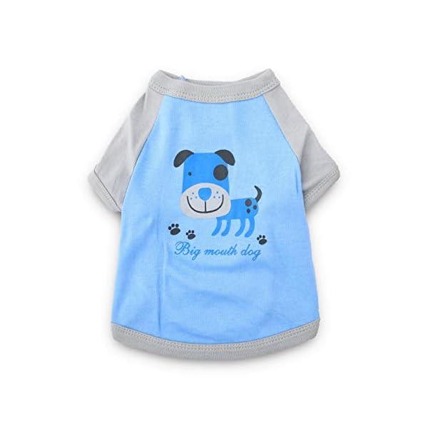 DroolingDog Dog Clothes Pet Tee Shirts Dog T Shirt for Small Dogs