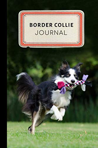 Border Collie Journal: Cute Border Collie Training Journal - A Dog Show Exhibitor's Log Book - 100 pages 6 x 9 inches (Border Collie Training  Series Volume 7)