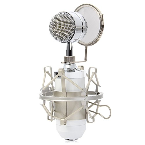 Chrome Lav Plug (Sound Studio Recording Condenser Wired Microphone With 3.5mm Plug Stand Controlled By High Precision Electronic Circuit, Featuring Good Heart-shaped Pick-up (white))