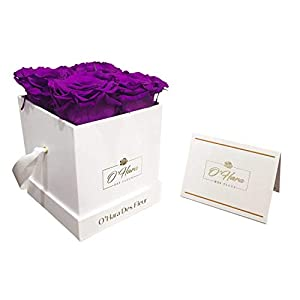 O'HARA DES FLEUR | Real Roses That Last a Year or More|Preserved Roses in a Box No Need to Water Or Deal with Wilted Petals (Purple, White Box)