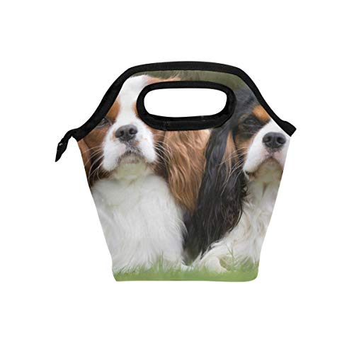 Price comparison product image Lunch Box Royal Charles Spaniel Dogs Womens Insulated Lunch Bag Kids Zipper Lunch Tote