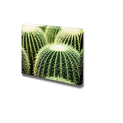Classic Design, Marvelous Design, Closeup Photo of Cactus Wall Decor Wood Framed
