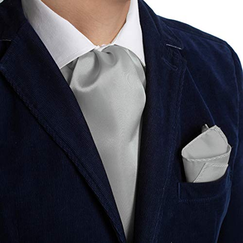 (Dan Smith DRC1E01H Silver Plain Microfiber Casual Gift Idea Ascot and Matching Handkerchief)