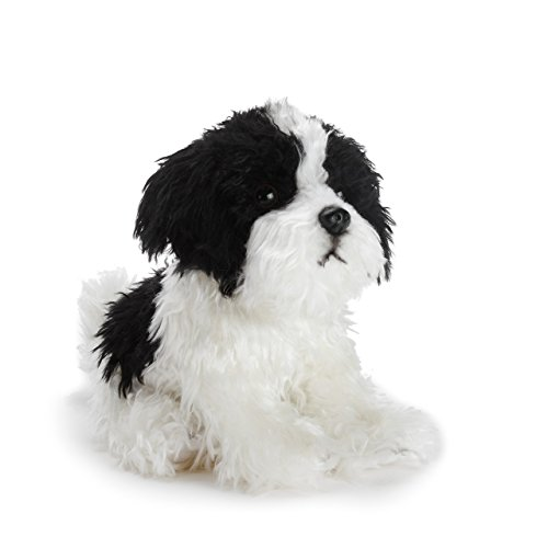 l Havanese Dog Black and White Children's Plush Stuffed Animal ()