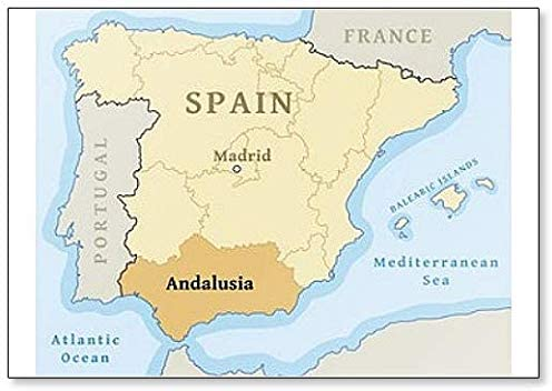 Map Of Spain Andalucia.Amazon Com Andalusia On Spain Map Fridge Magnet Kitchen Dining