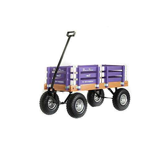 Most Popular Pull Along Wagons