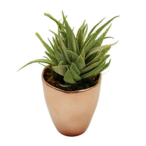 41lLo1Sx4FL - Faux Succulent Aloe Plant in Copper Rose Gold Metallic Vase - Potted Metallic Modern Decor Artificial Succulent in Green