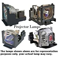 EPSON V13H010L22 Projector Lamp with Housing V13H010L22