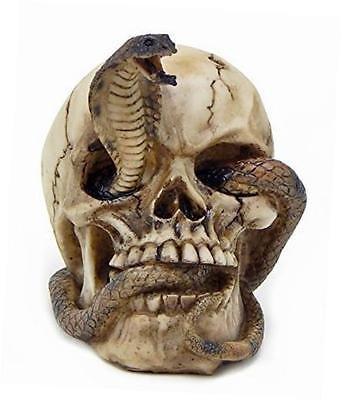 Skeleton Cobra Snake Habitat Skull Figurine Statue Sculpture Halloween - Halloween Statues