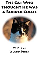 The Cat Who Thought He Was a Border Collie