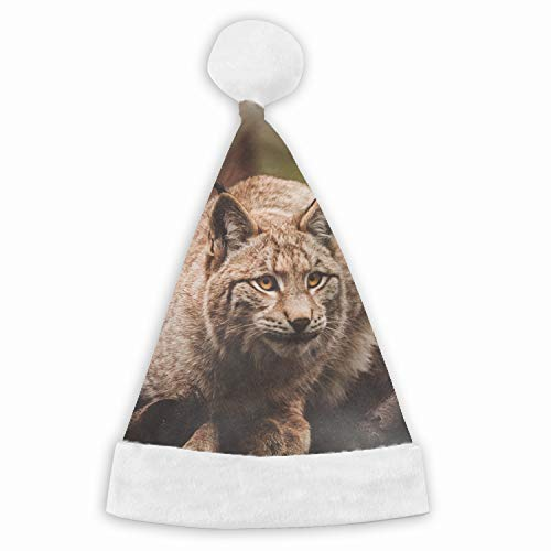 (Santa Hat,Lynx Sits Unisex Velvet Fabric Christmas Hat with Comfort Lining&Plush)