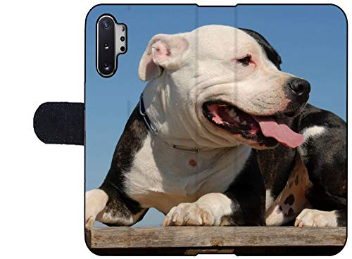 MSD Premium Designed Note 10 Plus Flip Fabric Wallet Case Image ID: 1827381 Portrait of a Beautiful Purebred American Staffordshire Terrier 2