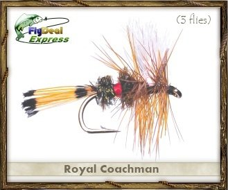 (Fly Fishing Flies - ROYAL COACHMAN - Dry Fly (3-pack))
