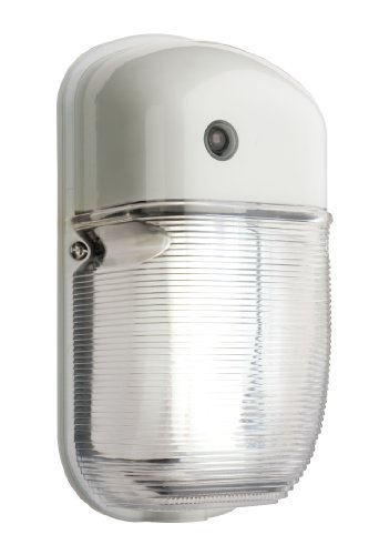 Compact Fluorescent Outdoor Lighting